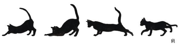 black-kittens-cropped