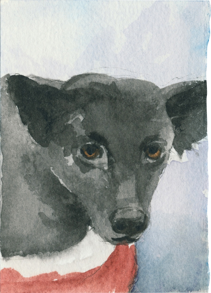 """Rescued-09, 2"""" x 3"""", Watercolor on paper"""