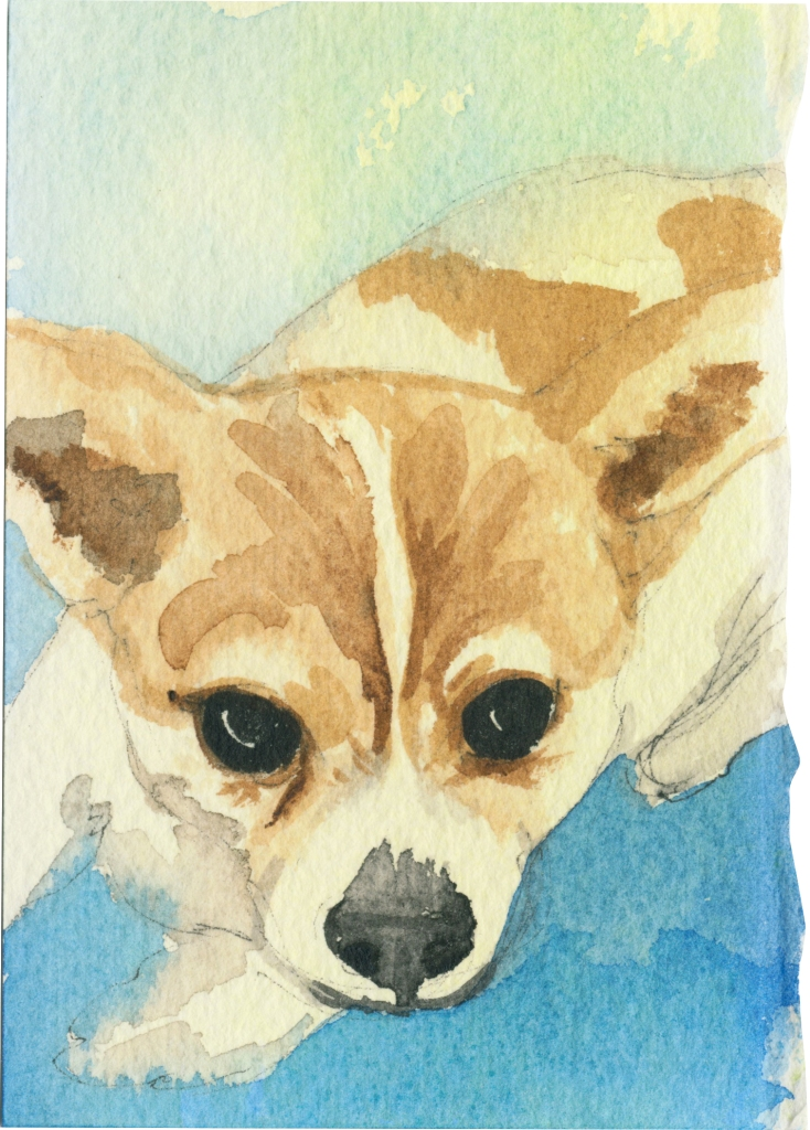 "Rescued-11, 2"" x 3"", Watercolor on paper"