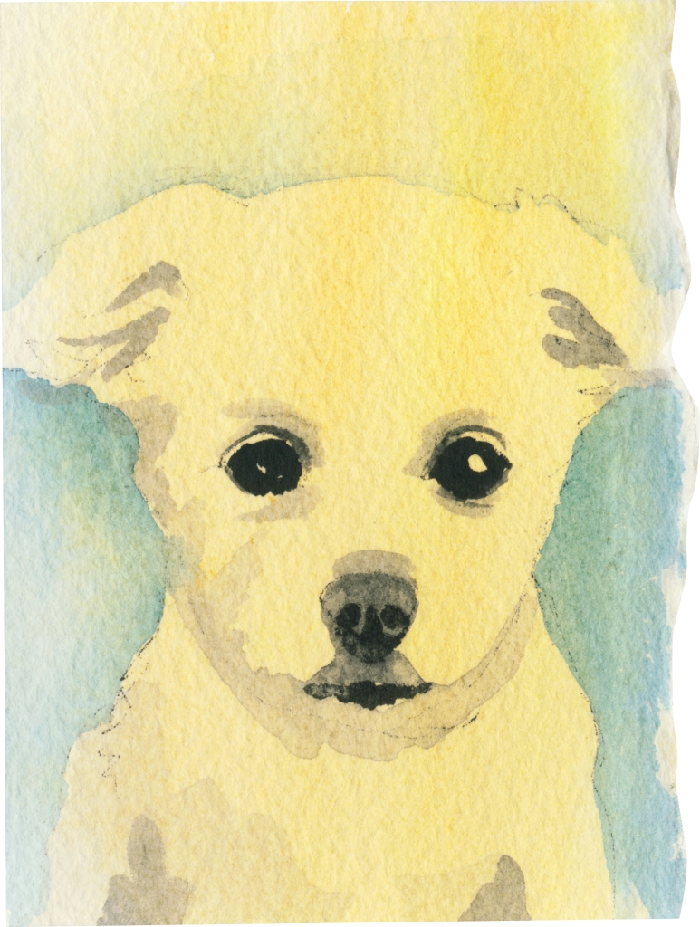 """Rescued-16, 2"""" x 3"""", Watercolor on paper"""