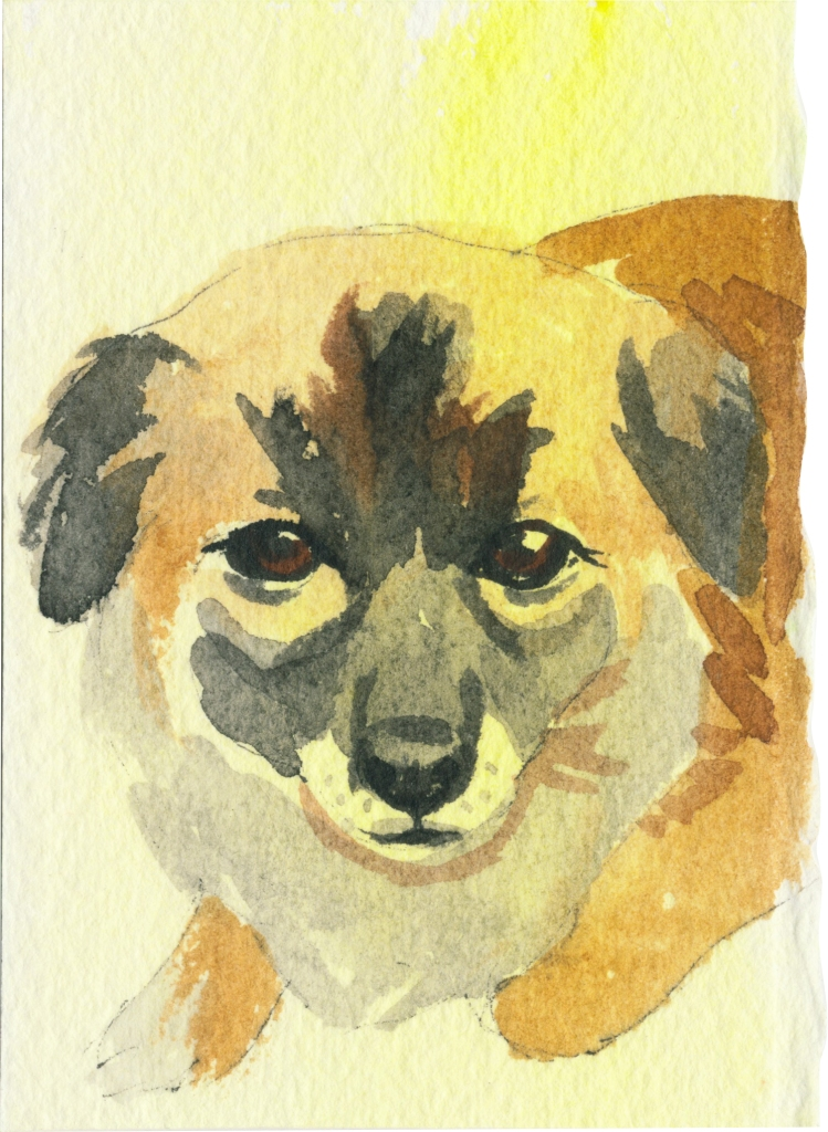 "Rescued-18, 2"" x 3"", Watercolor on paper"