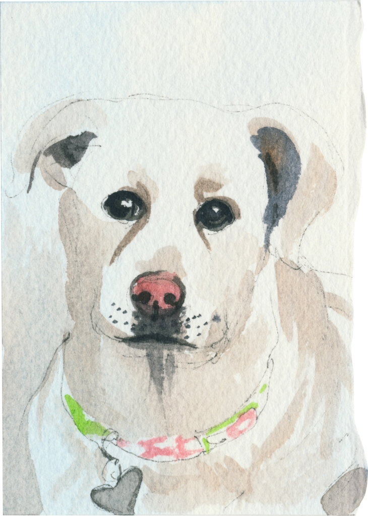 """Rescued-19, 2"""" x 3"""", Watercolor on paper"""