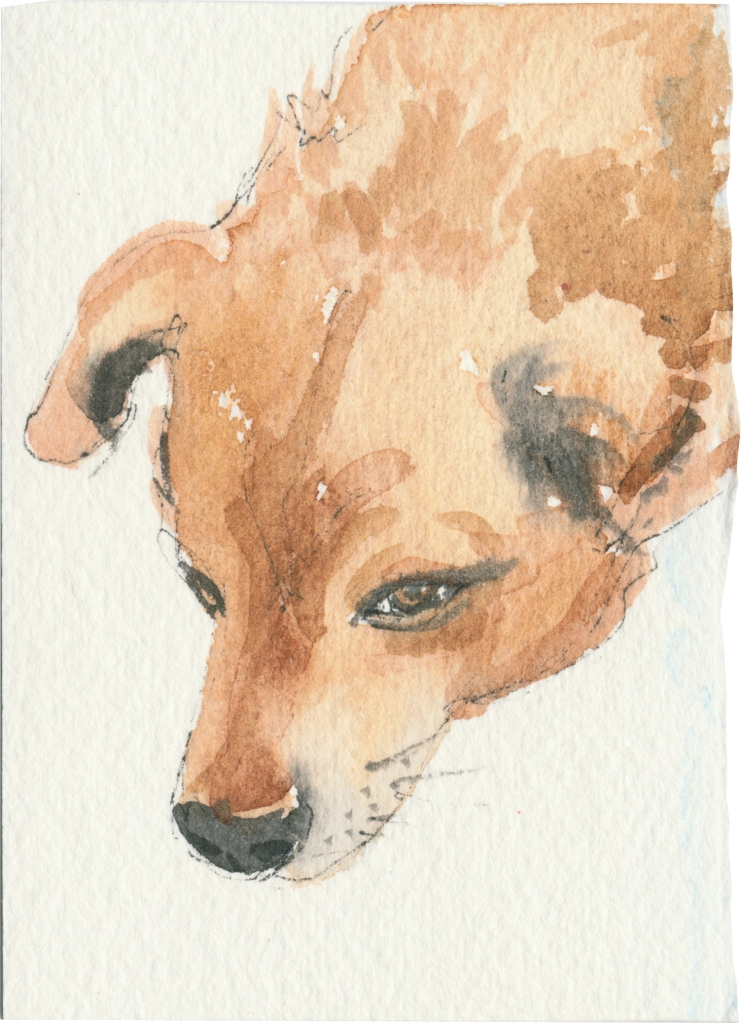 """Rescued-20, 2"""" x 3"""", Watercolor on paper"""
