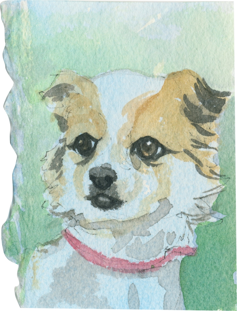 """Rescued-27, 2"""" x 3"""", Watercolor on paper"""