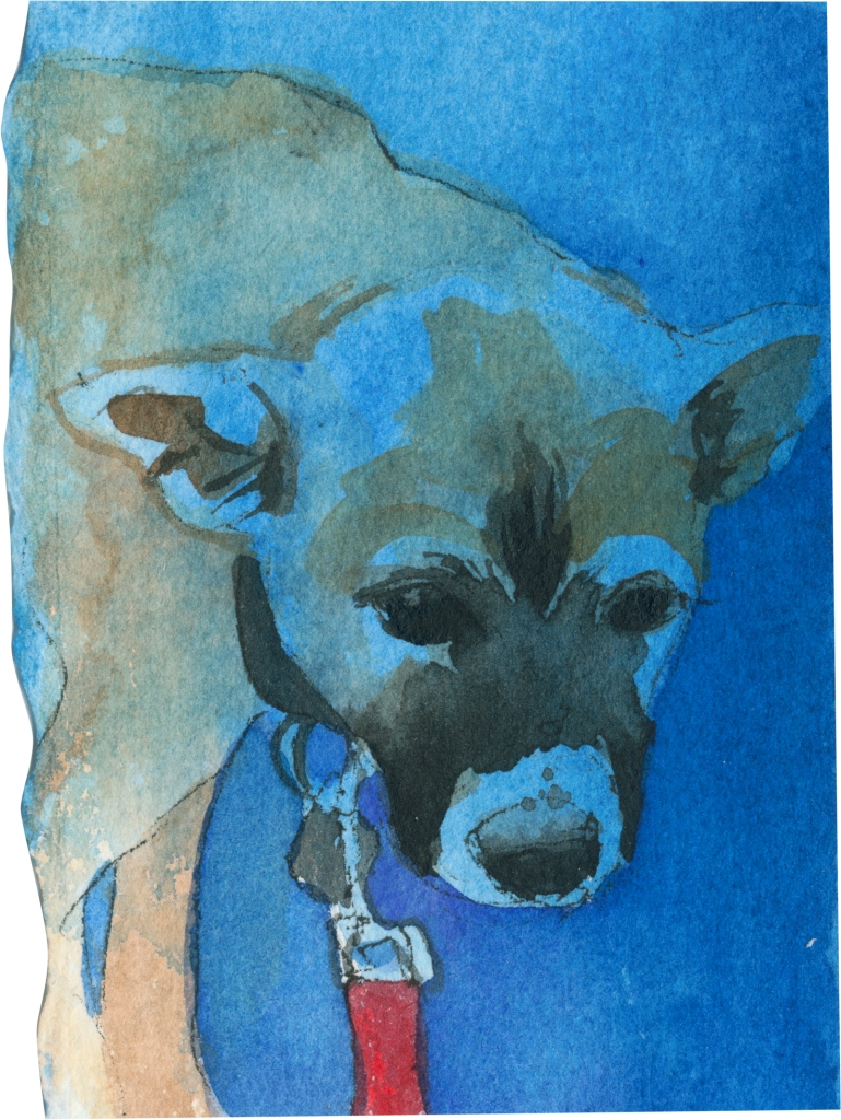 """Rescued-38, 2"""" x 3"""", Watercolor on paper"""