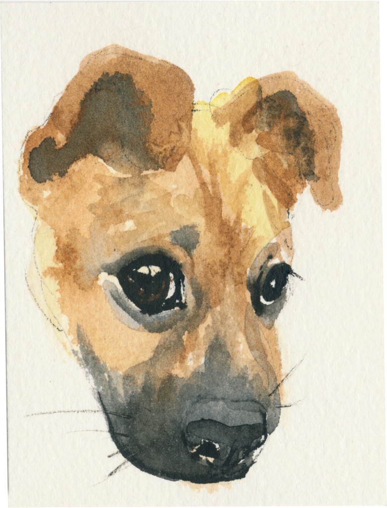 "Rescued-40, 2"" x 3"", Watercolor on paper"