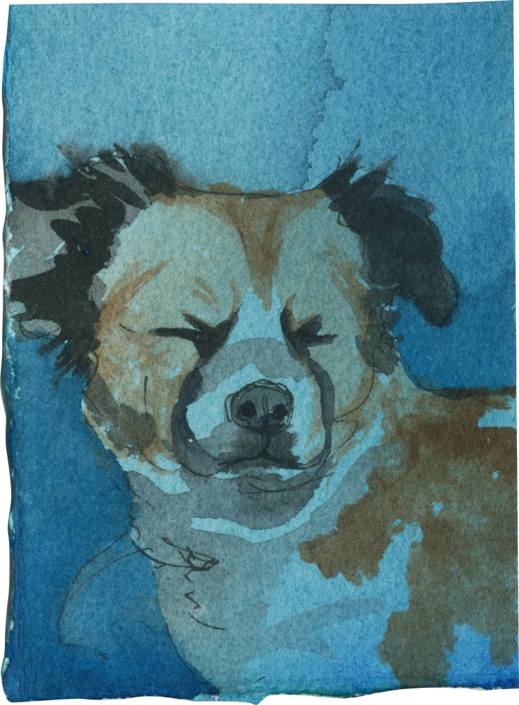 """Rescued-49, 2"""" x 3"""", Watercolor on paper"""