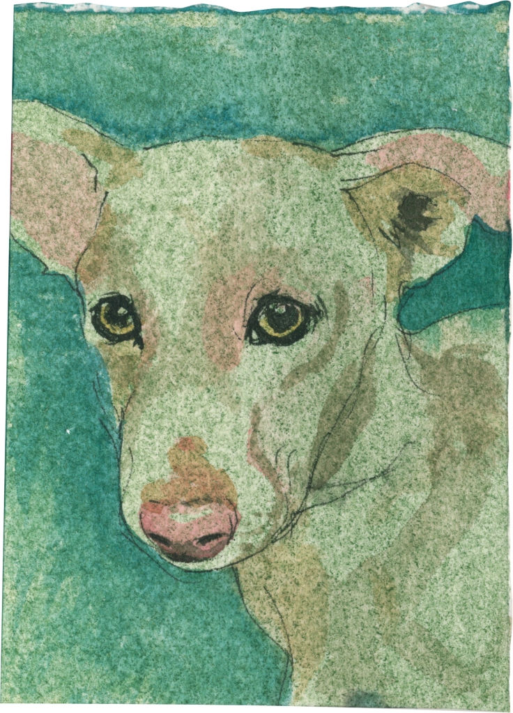 """Rescued-51, 2"""" x 3"""", Watercolor on paper"""