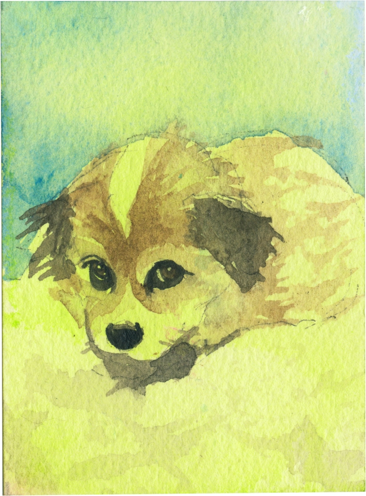 "Rescued-52, 2"" x 3"", Watercolor on paper"