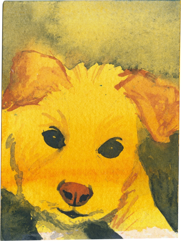 """Rescued-56, 2"""" x 3"""", Watercolor on paper"""