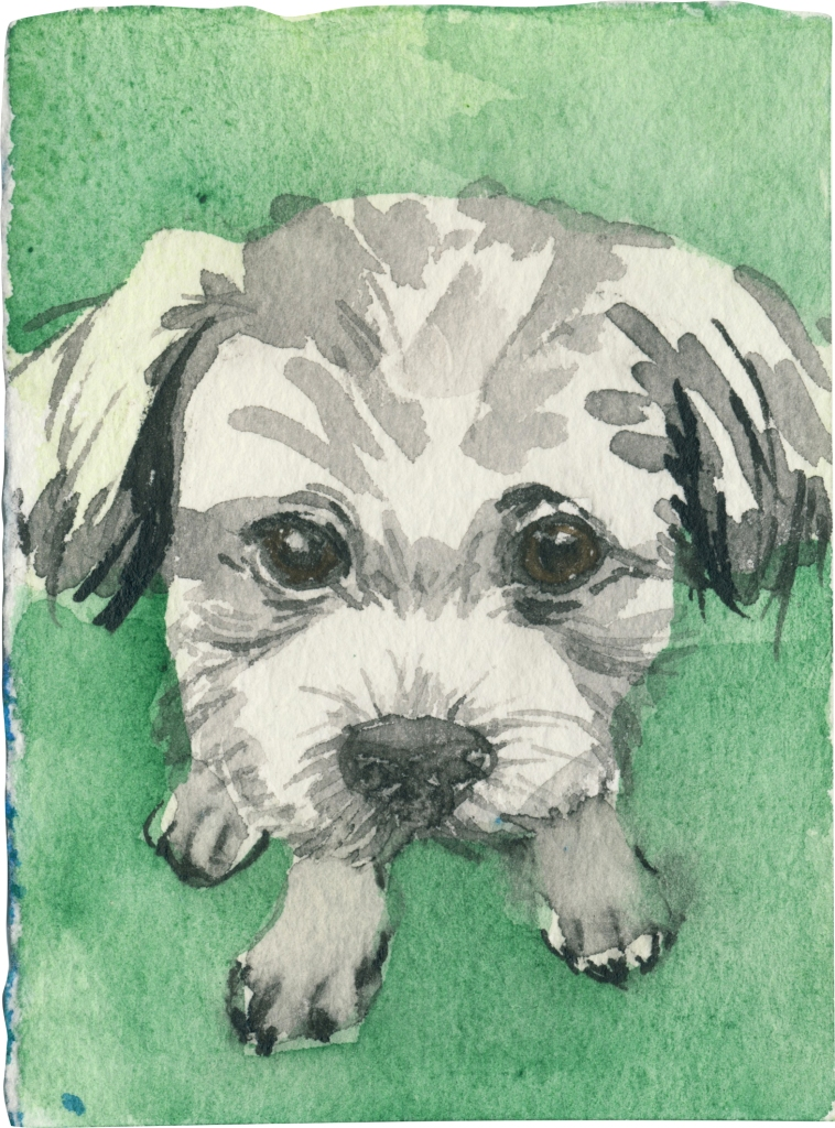 """Rescued-65, 2"""" x 3"""", Watercolor on paper"""