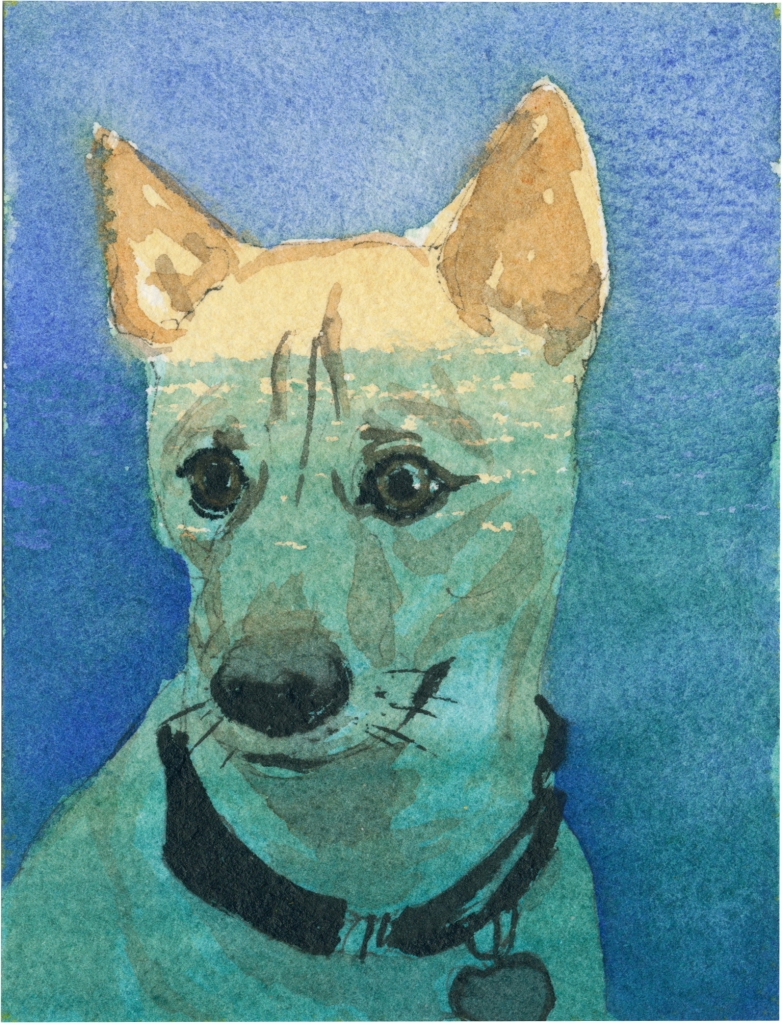 """Rescued-70, 2"""" x 3"""", Watercolor on paper"""