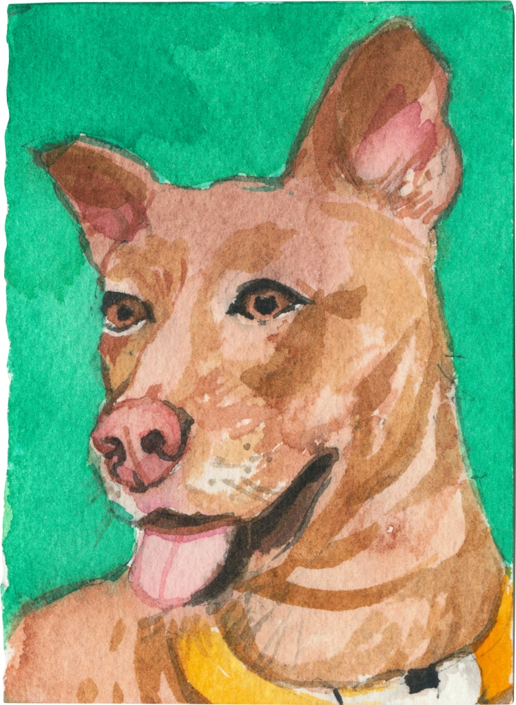 "Rescued-76, 2"" x 3"", Watercolor on paper"
