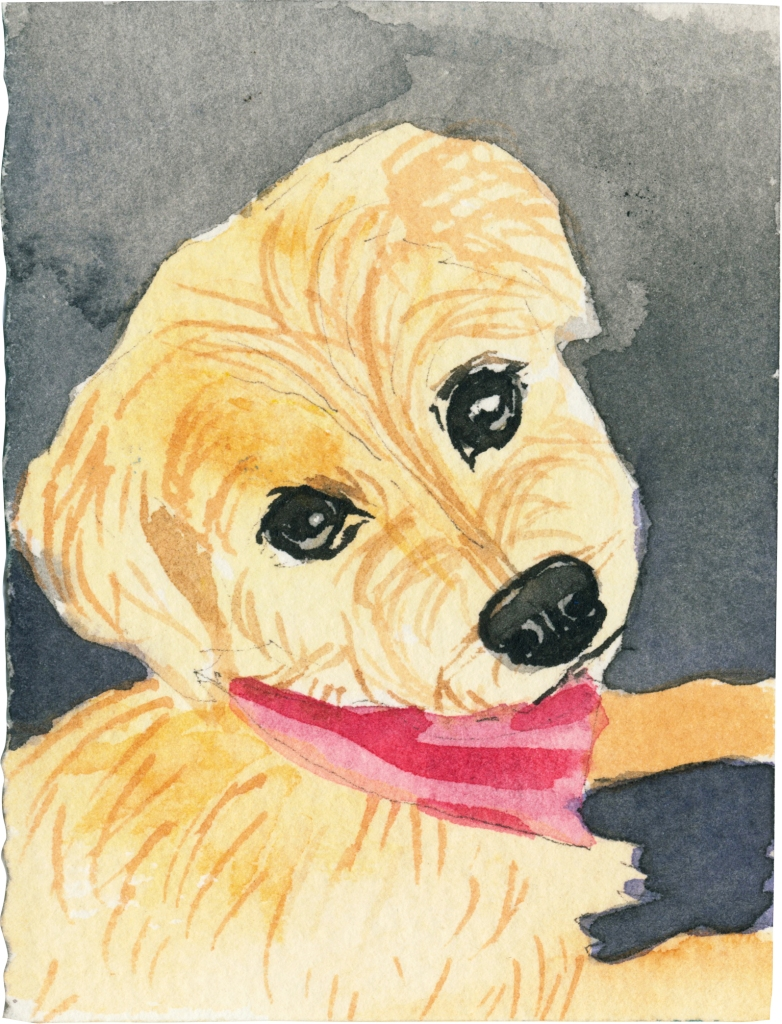 """Rescued-80, 2"""" x 3"""", Watercolor on paper"""