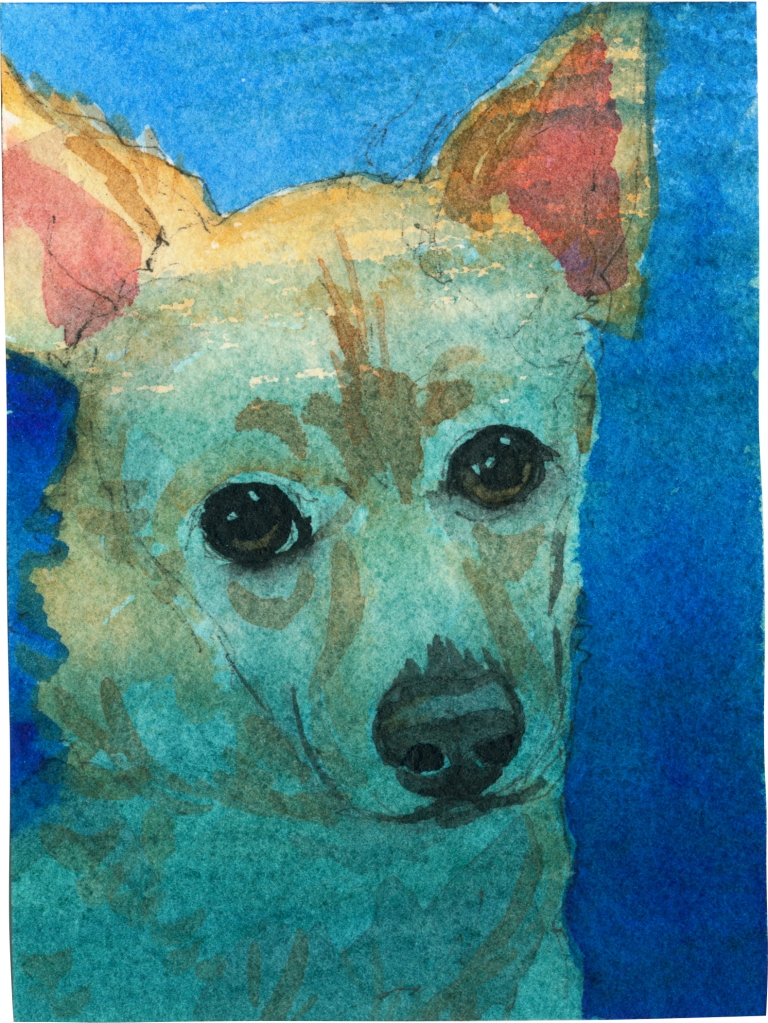 "Rescued-82, 2"" x 3"", Watercolor on paper"