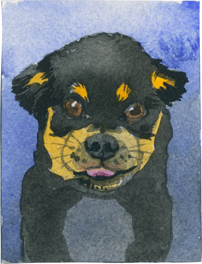 """Rescued-86, 2"""" x 3"""", Watercolor on paper"""