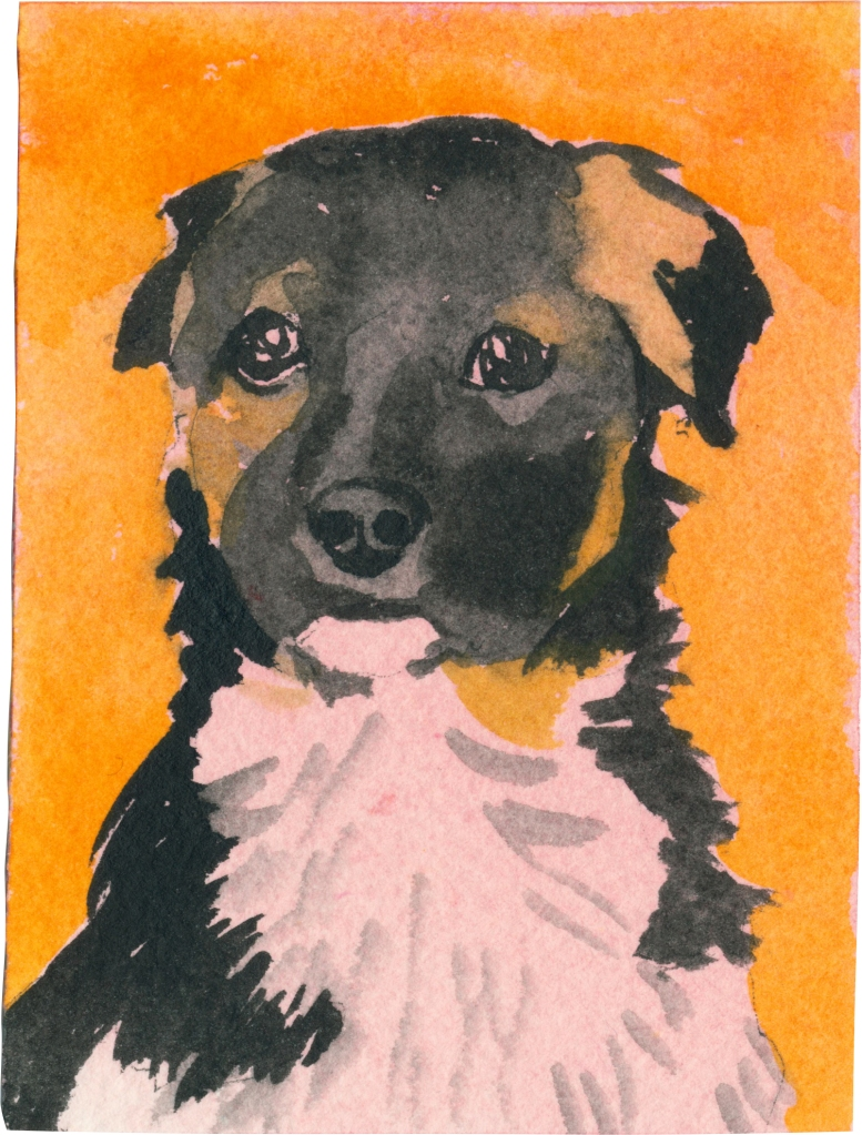 """Rescued-87, 2"""" x 3"""", Watercolor on paper"""