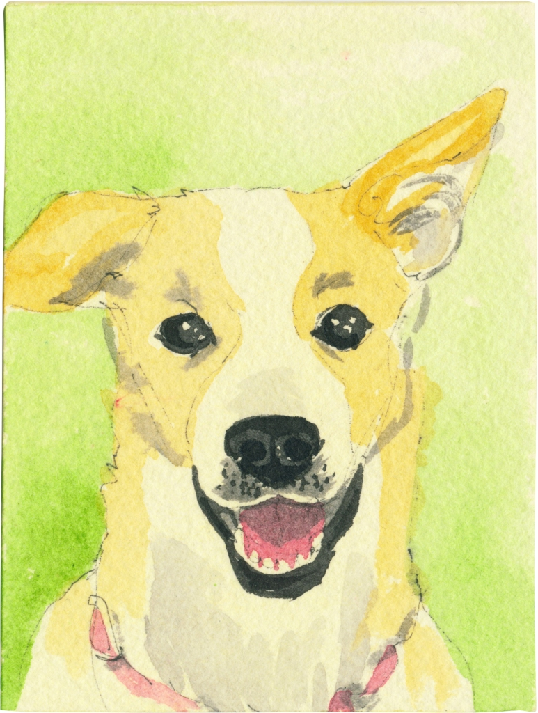 "Rescued-88, 2"" x 3"", Watercolor on paper"