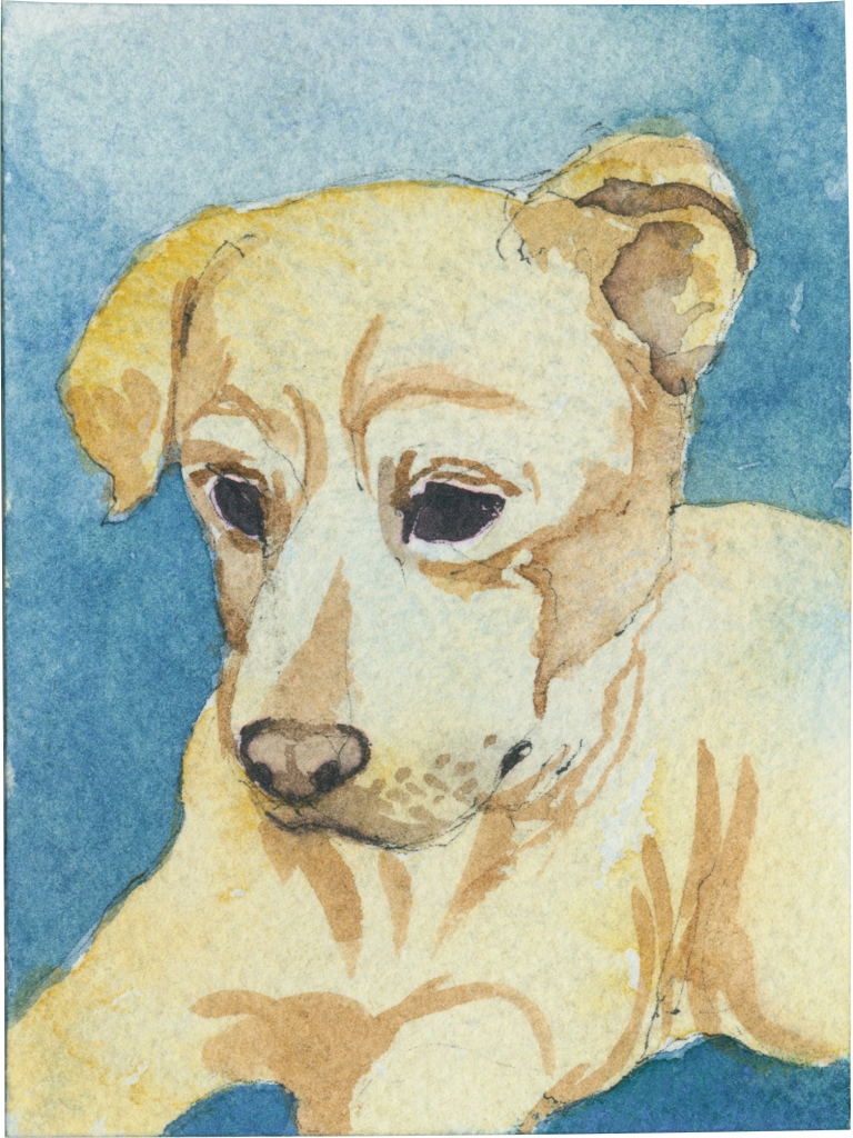 """Rescued-90, 2"""" x 3"""", Watercolor on paper"""