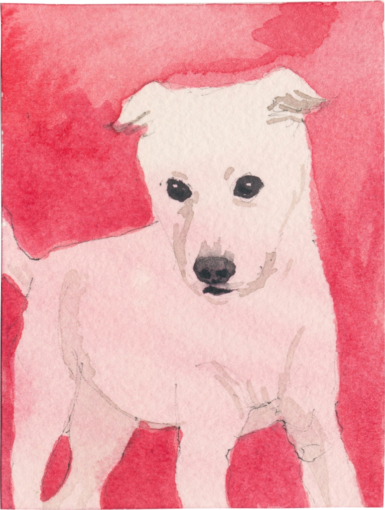 """Rescued-91, 2"""" x 3"""", Watercolor on paper"""