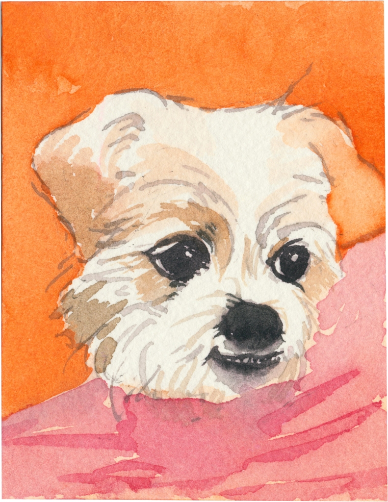 "Rescued-98, 2"" x 3"", Watercolor on paper"