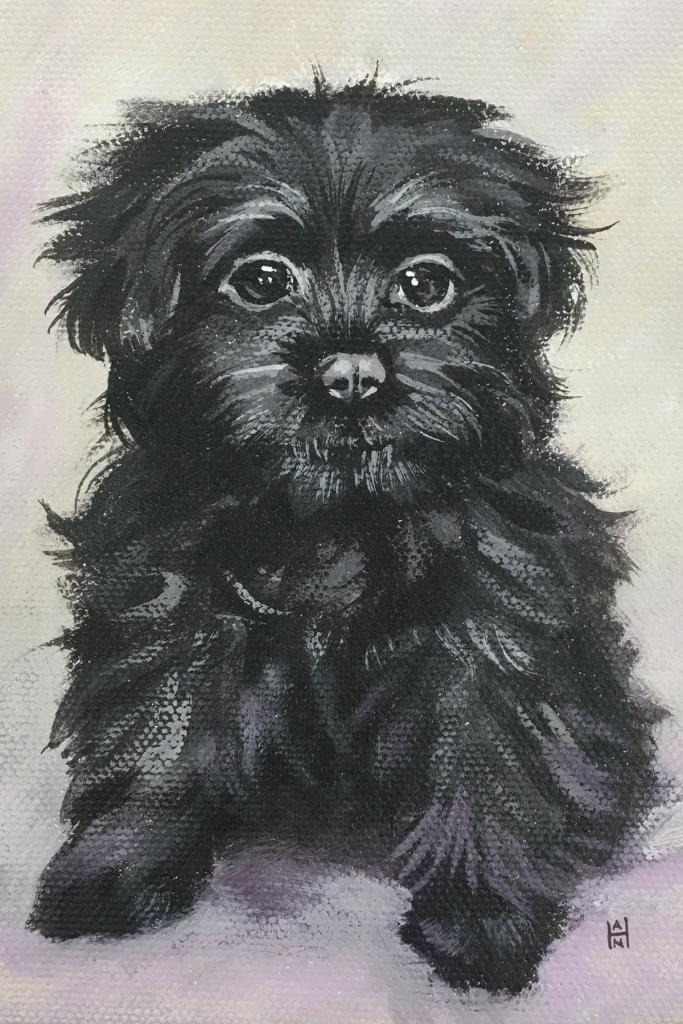 """Blackie, 5"""" x 7"""", acrylic on canvas"""